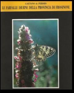 farfalle_diurne_frosinone