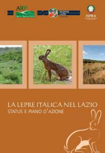 lepre_italica_lazio
