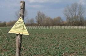 anagni-agricoltura